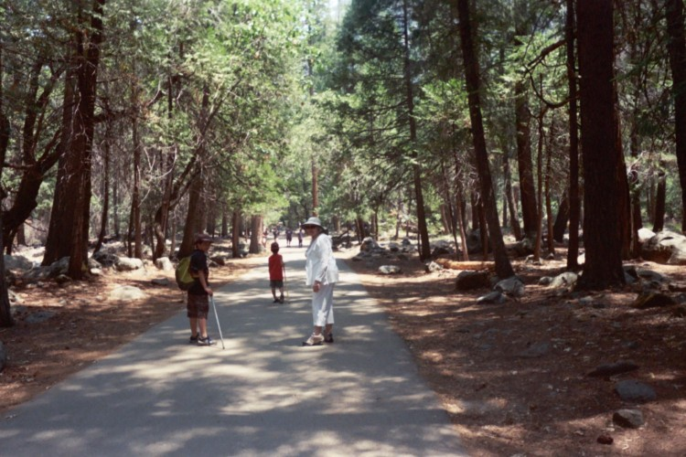 Among the Redwoods with my Mom and sons circa 2007.